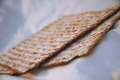 Passover - Shalom