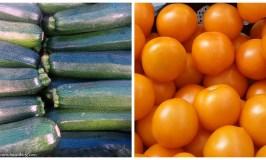 Farmers_Market_zucchini_persimmons