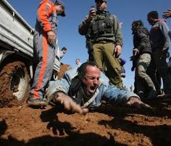 Injured-Palestinian-construction-worker-screams-in-pain