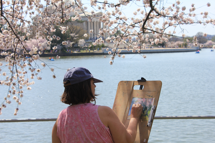 An artist captures the cherry blossoms in pastels. (Photo by Andrea Kenner, Apr. 9, 2013)