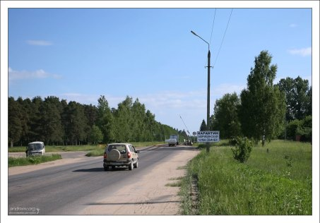 Африканская чума свиней под Торжком. По дороге из Москвы в Санкт-Петербург, Россия.