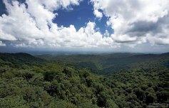 Холмы El Yunque.
