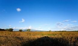 Поля вдоль Интерамериканы на севере страны.