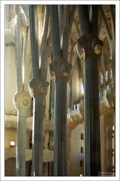 Каждая из колонн может выдержать семибальное землетрясение. Саграда Фамилия.