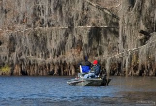 Рыбалка по-техасски.