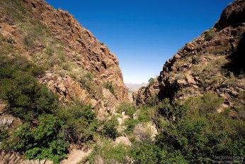 Спуск в каньон по тропе Window Trail.