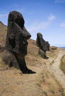 Большинство истуканов-моаи вырезаны из спрессованного вулканического пепла.