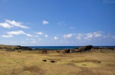 Семейство лошадей на южном берегу.