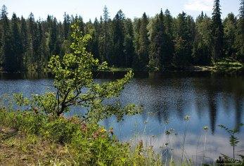 Спокойные воды Игуменского озера.