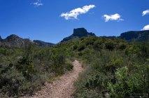 Плоский участок тропы Window Trail по направлению к Casa Grande.