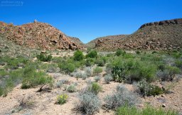 Grapevine Hills trail в западной части парка.