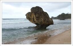 Причудливый булыжник, подточенный водой. Пляж Bathsheba.