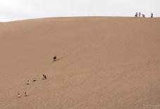 Популярное развлечение - спуск на досках по дюнам. Марсовая долина.