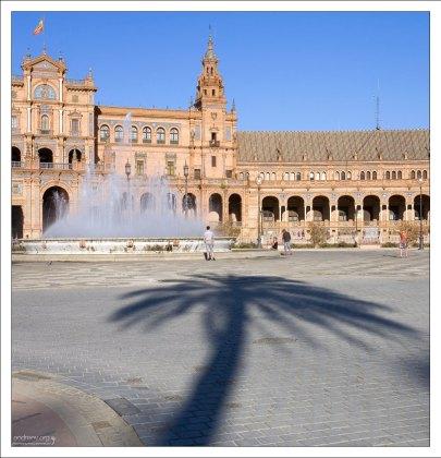 Тень от пальмы на Площади Испании.
