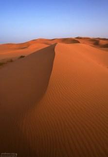 Рельеф песков представлен преимущественно дюнами, вытянутыми в направлении господствующих ветров.