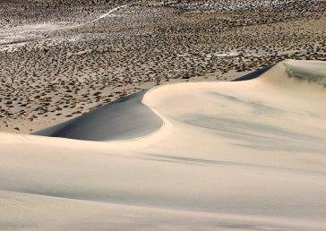 Парные изгибы: песчаный и дорожный.