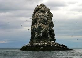 Одиноко возвышающаяся скала.
