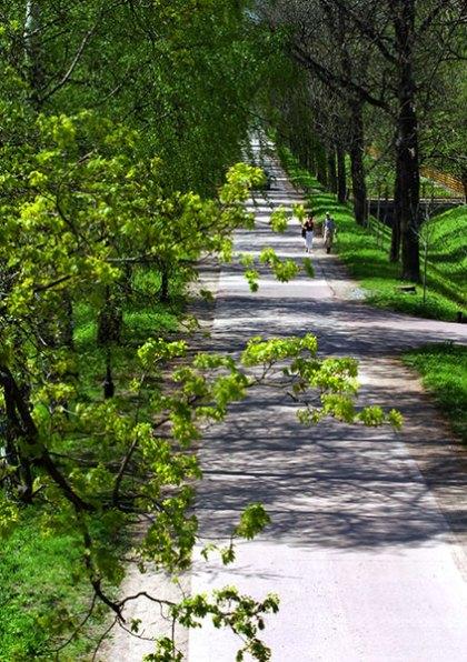 Романтическая аллея в Александровском парке. Пушкин.