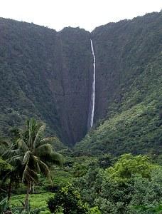 Самый высокий на острове водопад Hi'ilawe Falls (высота 1,600 футов ~ 488 метров). Waipi'o Valley.