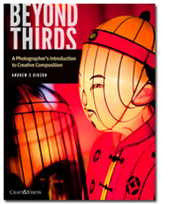 Beyond Thirds ebook cover