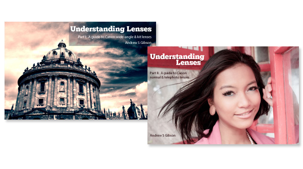 Understanding Lenses ebook bundle