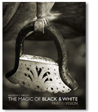 The Magic of Black & White Part I Craft ebook cover