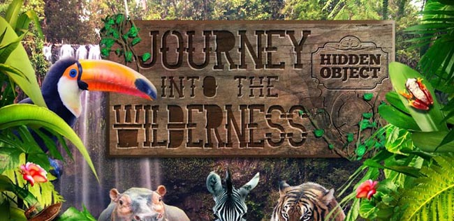 Hidden Object- Into Wilderness