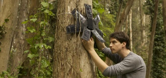 rainforest-connection-kickstarter