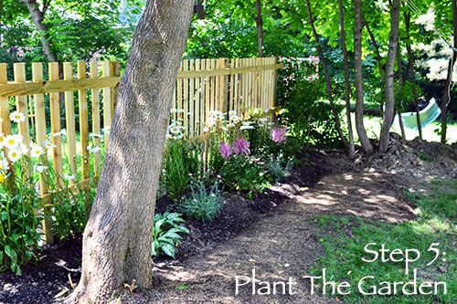 Step 5: Plant Garden