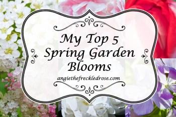 My Top 5 Spring Garden Blooms