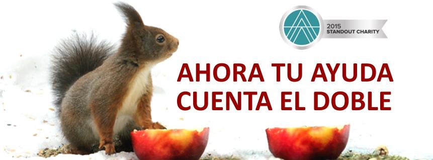 http://i1.wp.com/www.animal-ethics.org/wp-content/uploads/ayuda-cuenta-doble-dic-15.jpg