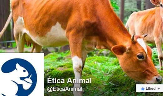 Ética Animal en las redes sociales
