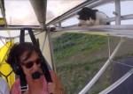 フライト前の点検は万全だったのにニャンコが搭乗していた!