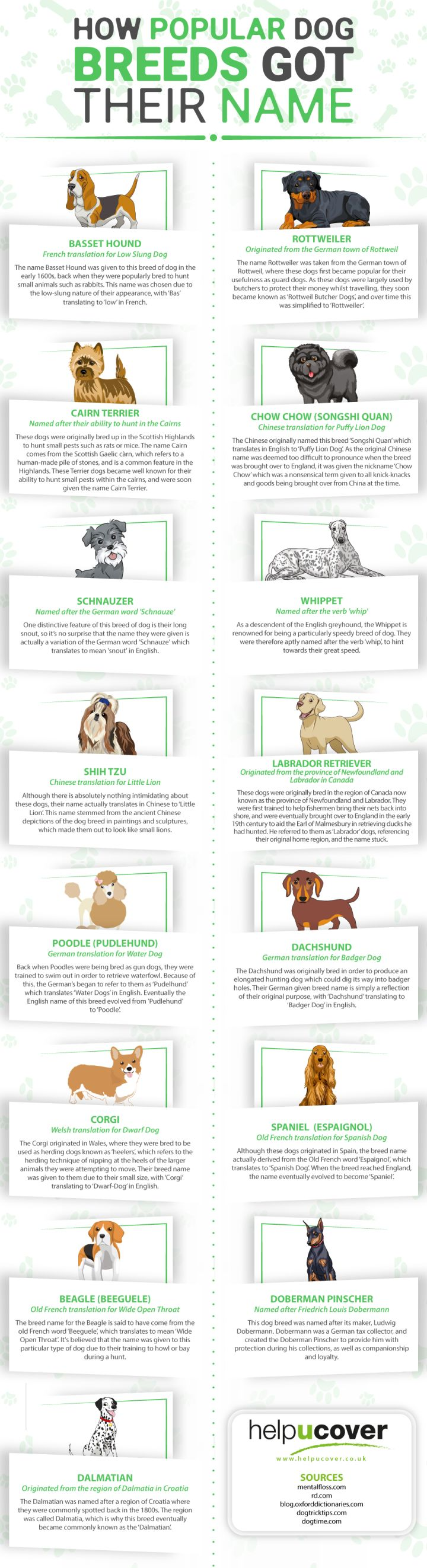 Popular Meanings How Dog Breeds Got Ir Names Infographic How Dog Breeds Got Ir Names Animal Bliss German Names Dogs Dachshund German Names Dogs bark post German Names For Dogs