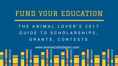 2017 guide to scholarships for animal lovers