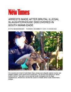 saving animals miami