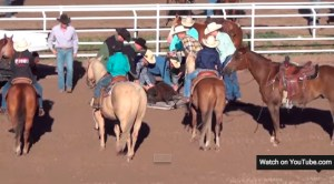 Horses' rear ends in Cheyenne