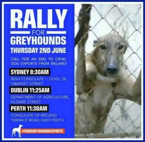 End Greyhound Exports poster. (Animals Australia)