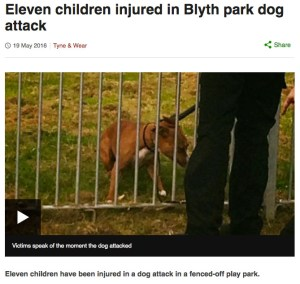 (From BBC News)