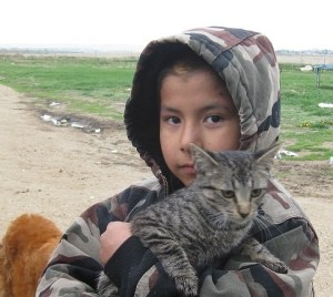 Boy and cat-reduced size cropped
