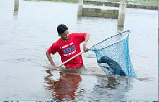 """""""Dogfishing"""" in Chennai.   (Blue Cross of India photo)"""
