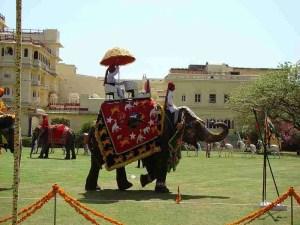 (World Elephant Polo Association photo)