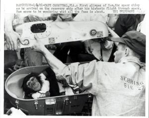 Ham, the first U.S. space chimp.