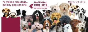AVMA Dog Bite Prevention Week 2015 banner