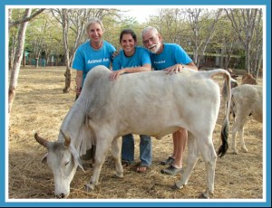 Erika Abrams, daughter Claire Abrams-Myers, and husband Jim Myers at the Animal Aid hospital & sanctuary in Udaipur, India.
