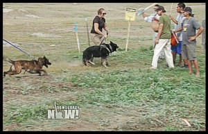 """""""One female dog handler in particular was lunging toward the crowd aggressively with her dog."""" (From Facebook video.)"""