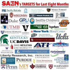SAEN targets