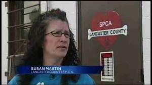 Lancaster SPCA director Susan Martin. (From WGAL video.)