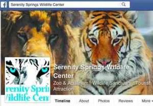 Serenity Springs FB