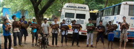 The Blue Cross of India rescue team.